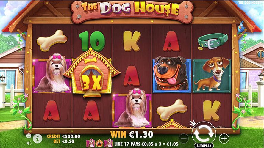 the dog house 5 reel slot